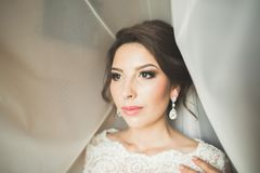 Portrait of beautiful bride with fashion veil at wedding morning Royalty Free Stock Photography