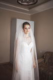 Portrait of beautiful bride with fashion veil at wedding morning.  dress Stock Photos