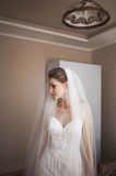 Portrait of beautiful bride with fashion veil at wedding morning.  dress Stock Photography