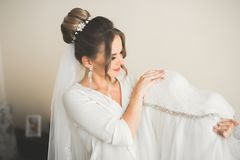 Portrait of beautiful bride with fashion veil at wedding morning Stock Photos