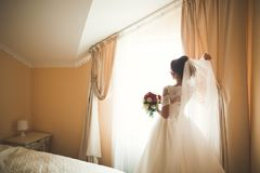 Portrait of beautiful bride with fashion veil at wedding morning.  Stock Image