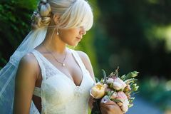 Portrait of beautiful bride Stock Photos