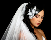 Portrait of the beautiful bride on vail royalty free stock photos