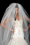 Portrait of the beautiful bride with veil royalty free stock photography