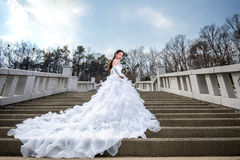Portrait of the beautiful bride weddin. Stock Photo