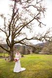 Portrait of Beautiful Bride on Wedding Day Stock Image