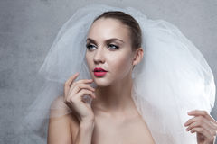 Portrait of beautiful bride Royalty Free Stock Photography