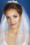 Portrait of beautiful bride. Wedding dress.Young Gentle Quiet Bride in Classic White Veil Looking Away.Marriage Wedding day.Portra Royalty Free Stock Photo