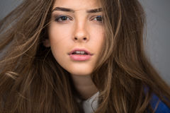 Portrait of a beautiful brown-haired girl Royalty Free Stock Photography