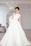 Portrait of beautiful brunette bride with elegant hairstyle and makeup wearing long luxury wedding dress Stock Photo