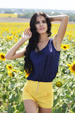 Portrait of a beautiful brunette in a field of sunflowers Royalty Free Stock Photos