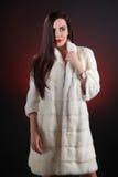 Portrait beautiful brunette in fur coat from mink Stock Photos