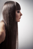 Portrait of a beautiful brunette woman with long straight hair Royalty Free Stock Photography