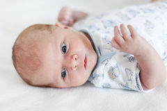 Portrait of beautiful caucasian newborn baby boy, indoor. Stock Photos
