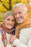 beautiful senior couple   in the park Stock Image
