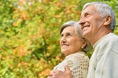 caucasian senior couple  in the park Stock Images