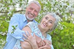 Portrait of beautiful caucasian senior couple Royalty Free Stock Photos