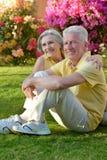 Senior couple smiling Royalty Free Stock Image