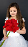 Portrait of a beautiful child girl royalty free stock photography