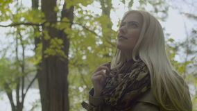 Portrait of a beautiful, dreamy girl with long blond hair holding a leaf in the autumn park.  stock footage
