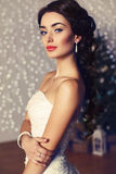 Portrait of beautiful elegant bride with dark hair posing at studio Royalty Free Stock Photos