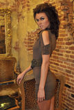 Portrait of beautiful fashion model Royalty Free Stock Photos
