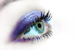 Portrait of a beautiful female blue eye Stock Photography
