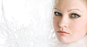 The portrait of the beautiful girl. On white background royalty free stock image
