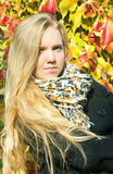 Portrait of the beautiful girl with autumn leaves Royalty Free Stock Photography
