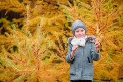 Portrait of beautiful girl background yellow fir-tree in fall Stock Photo