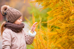 Portrait of beautiful girl background yellow leaf in fall Stock Photo