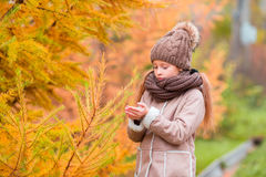 Portrait of beautiful girl background yellow leaf in fall Royalty Free Stock Photo