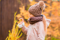 Portrait of beautiful girl background yellow leaf in fall Stock Photos