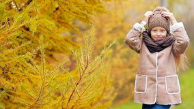Portrait of beautiful girl background yellow trees in fall stock video footage