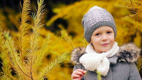 Portrait of beautiful girl background yellow trees in fall stock video