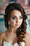 Portrait of a beautiful girl Royalty Free Stock Photos