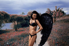 Portrait of a beautiful girl with black wings a demon Stock Images
