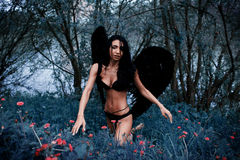 Portrait of a beautiful girl with black wings a demon. In the nature of fashion style Stock Image