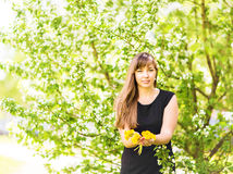 Portrait of beautiful girl with bouquet of yellow dandelions outdoor in spring, focus on eyes, apple blossom background Stock Image