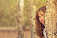 Portrait of a beautiful girl in the coniferous forest Royalty Free Stock Photography