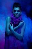 Portrait of the beautiful girl in dark tones Stock Images