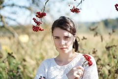 Portrait of a beautiful girl in a field Royalty Free Stock Image