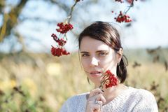 Portrait of a beautiful girl in a field Stock Image