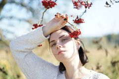 Portrait of a beautiful girl in a field Royalty Free Stock Photos