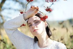 Portrait of a beautiful girl in a field Stock Images