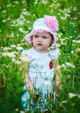 Portrait of a beautiful girl among the flowers Stock Image