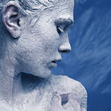 Portrait of a beautiful girl in the frost Stock Images