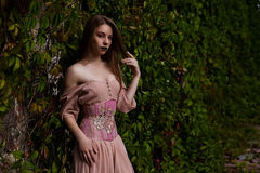 Portrait of beautiful girl in pastel pink dress and corset and flower emboidery Stock Photos
