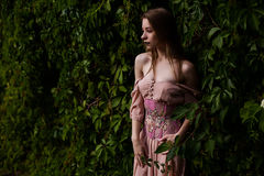 Portrait of beautiful girl in pastel pink dress and corset and flower emboidery. Posing in green climbing vines stock image