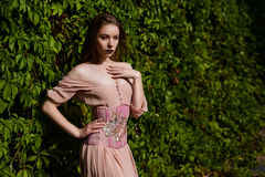 Portrait of beautiful girl in pastel pink dress and corset and flower emboidery. Posing in green climbing vines stock photography